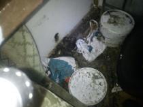 Rattenloch in der Wand eines isolierten Schuppens